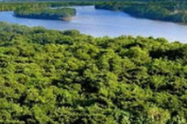 长春市自然保护区内还湿还林2828.7公顷