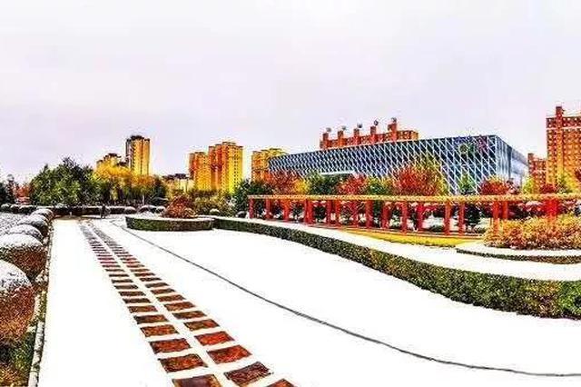 11月12日 白城市终于下了一场正儿八经的雪