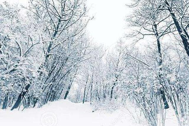 冷空气来袭 11月17日吉林省再迎大雪天气
