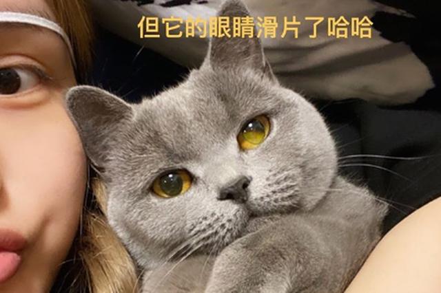 罗志祥女友周扬青晒与爱猫自拍 眼睛戴白色眼罩