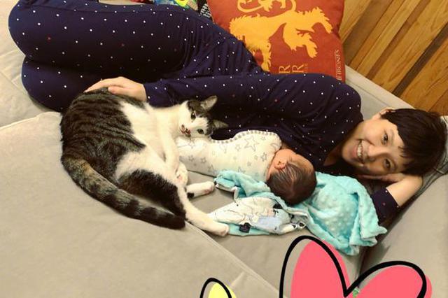谢依霖生二胎后首分享近况 与宝宝猫咪同框比可爱