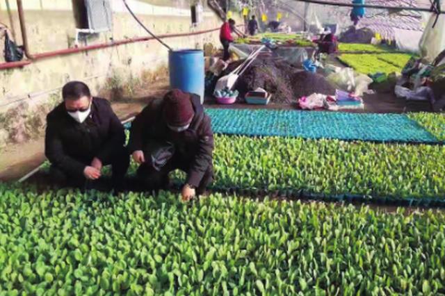 江城沃野春来早——吉林市多管齐下全力推进备春耕生产纪实