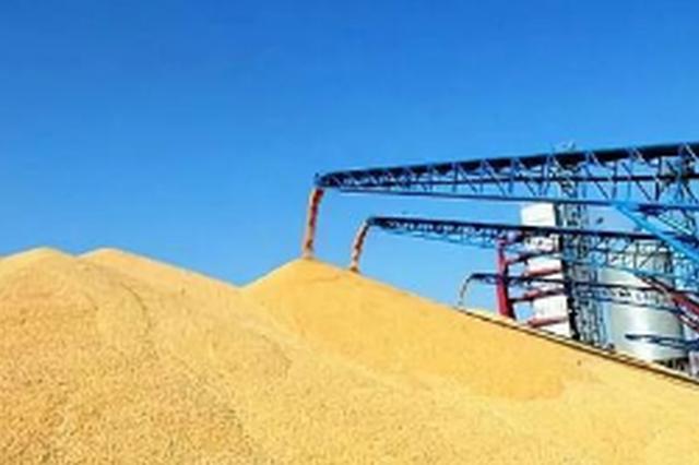 吉林省粮食流通管理实现智能化