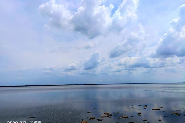 打卡农安县太平池国家湿地公园 水域宽广景色优美