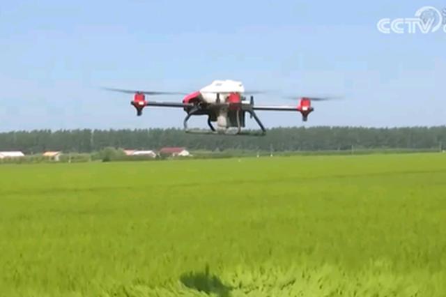 央视《新闻联播》点赞吉林省扎实推进现代农业
