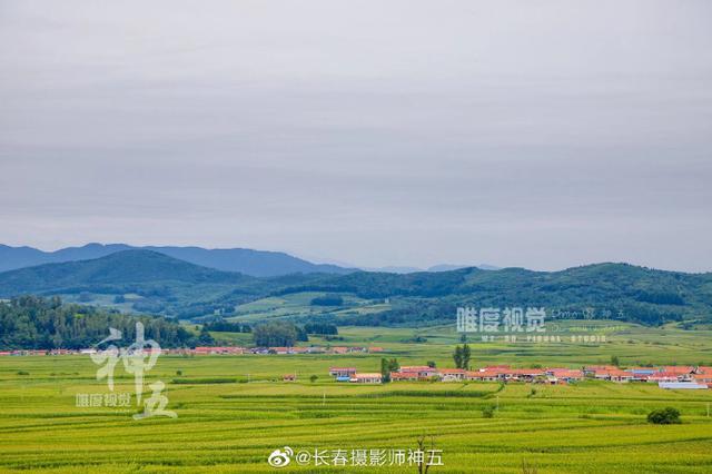 走进吉林省内的田间地头 感受风吹稻花香 小河水流淌