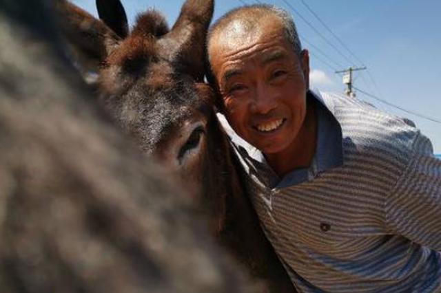 幸福吉林丨草原上的牧驴人