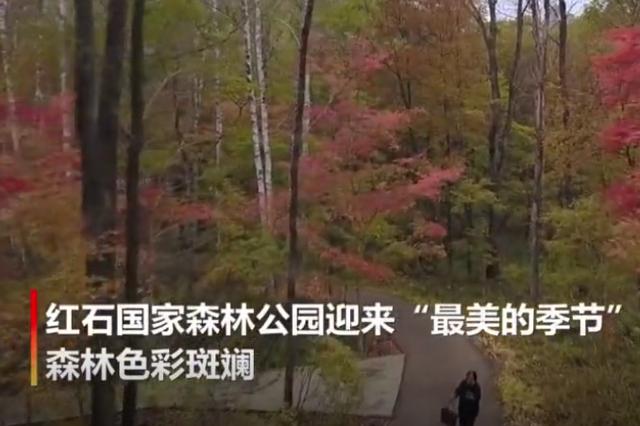 色彩斑斓!航拍吉林红石国家森林公园壮观秋景