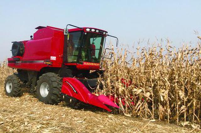 7个督导组深入田间指导秋收保进度 长春市玉米水稻大豆收获过
