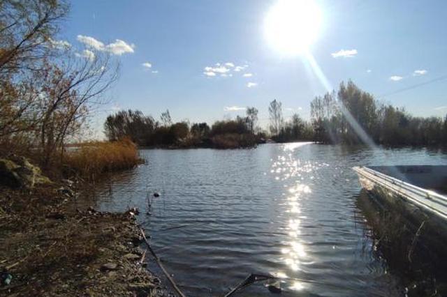 """上百种鸟类在吉林找到新家:城市周边湿地成""""天堂"""""""