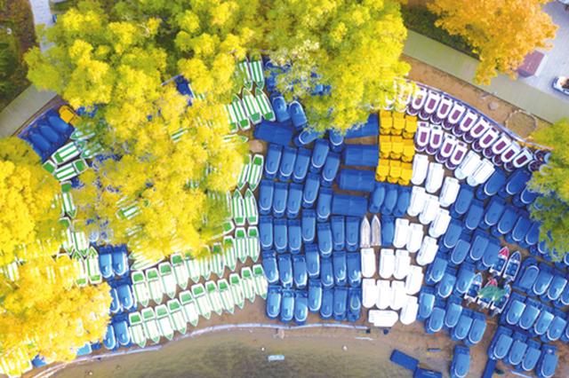 """长春南湖公园350艘游船上岸""""猫冬"""""""