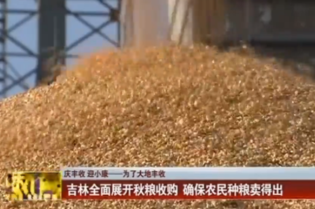 吉林全面展开秋粮收购 确保农民种粮卖得出