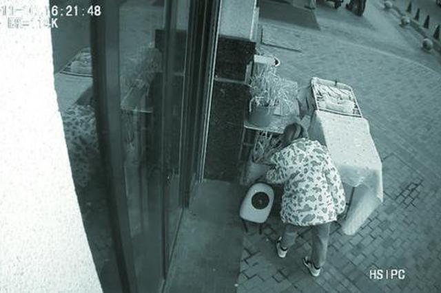长春女子将小猫弃在宠物店门口后离开 小猫正在治疗