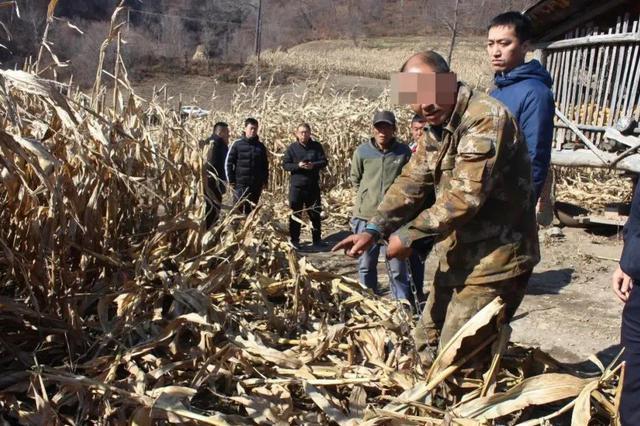 吉林省森林公安抓获潜逃17年命案犯罪嫌疑人