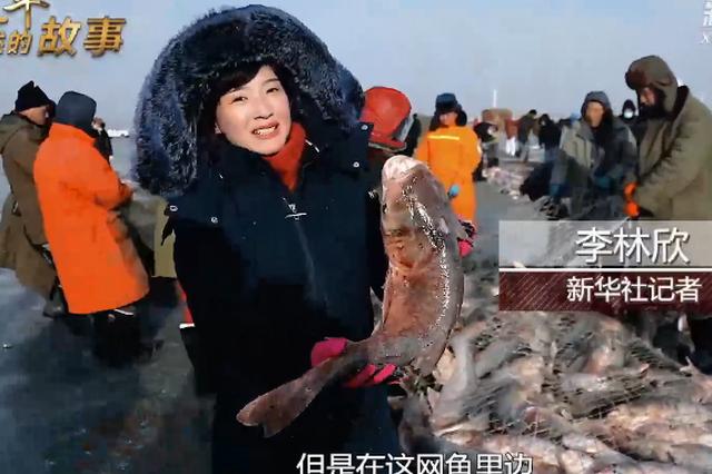 新华社视频:年年有鱼