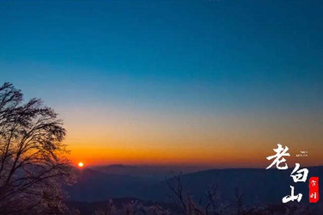 老白山原生态森林体验区宣传片合集