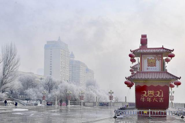 吉林市:琼花傲俏迎佳节