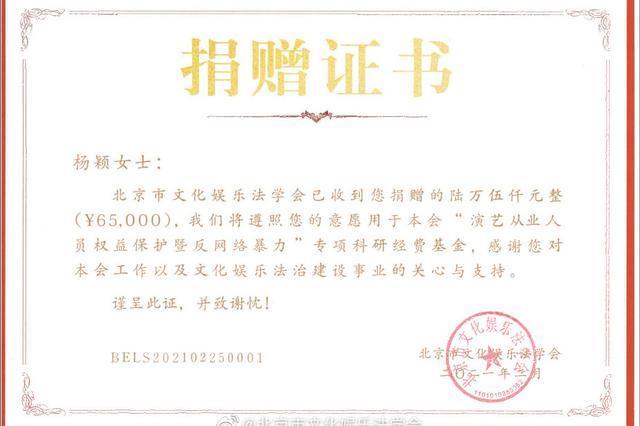 """杨颖捐赠名誉权案获赔款6万元 支持""""反网络暴力""""专项研究"""