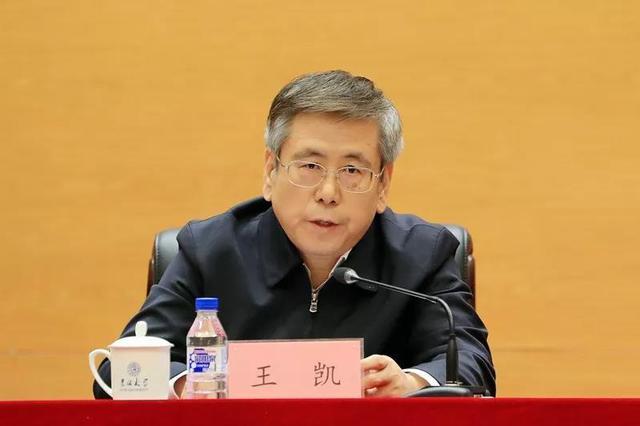 王凯任河南省人民政府副省长、代理省长