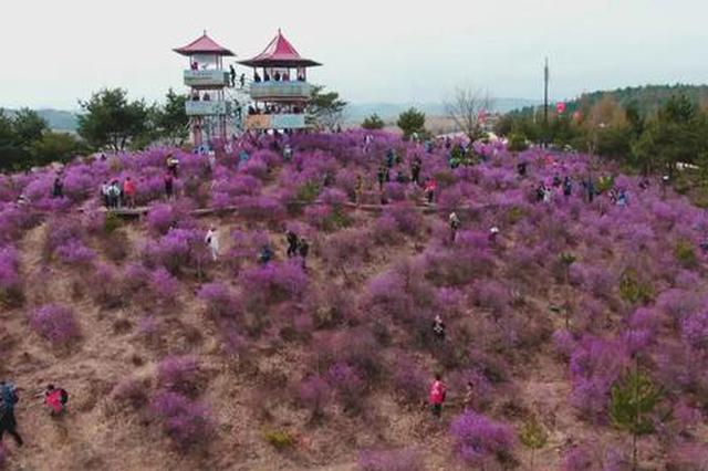 黄金假日 游遍吉林 花为媒 打造旅游好光景