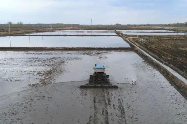 预防旱情 洮儿河抗旱补水1.5亿立方米