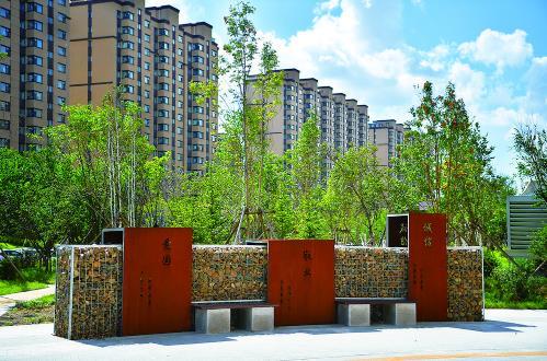 园林部门在新植街路上打造了不同的景观小品,增强绿化效果的同时,进一步提升城市品位。 张扬 摄
