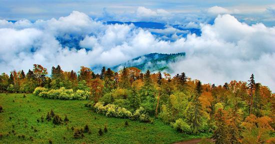 长白山森工集团加快推进森林旅游产业发展升级