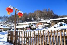 白山 冬季康养度假5日游