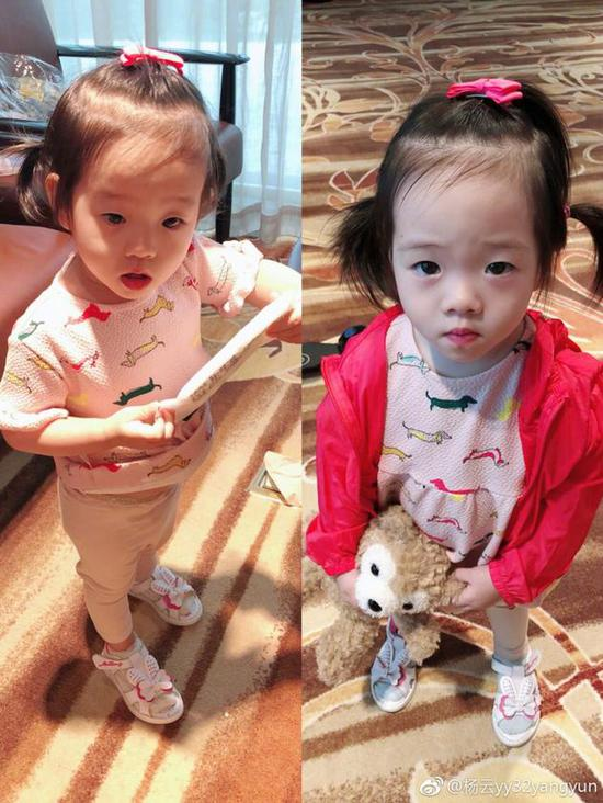 杨云晒双胞胎女儿的照片