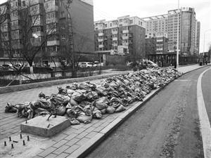 50多袋垃圾堆在人行道。李子涵 摄