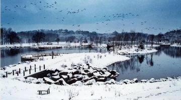 一场雪,美了我的净月潭