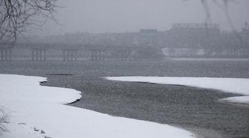 吉林市:冰消湖开引鹭来