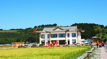 吉度光影:稻田如画的光东村