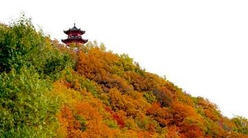 快来打卡吉林市最后的秋天景色!