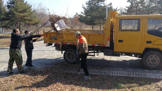 不误春时 龙井市推进春季园林绿化养护
