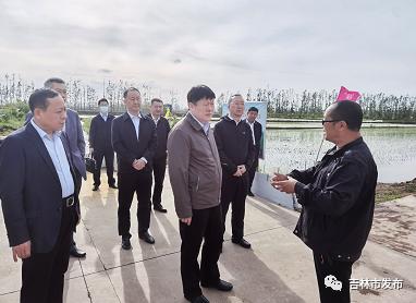 图为吉林市委书记贺志亮(中)在吉林市春新生态家庭农场调研。