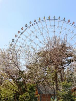 慵懒的午后时光 春日里的胜利公园