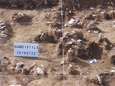 尼阿底遗址发掘现场。 受访者供图