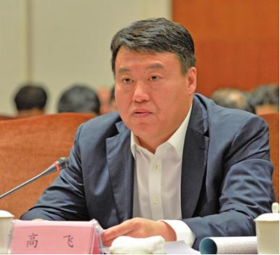 吉林省旅游控股集团有限责任公司董事长兼总经理高飞