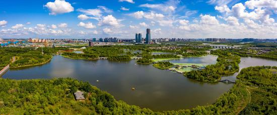长春高新文化旅游建设开发有限公司 精细管理 细致服务 铺展湿地公园秀美画卷