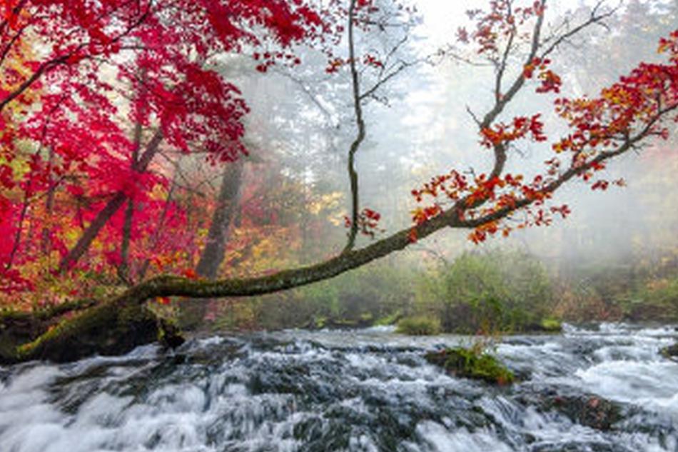 秋色长白山 用色彩勾勒出来的天然美景