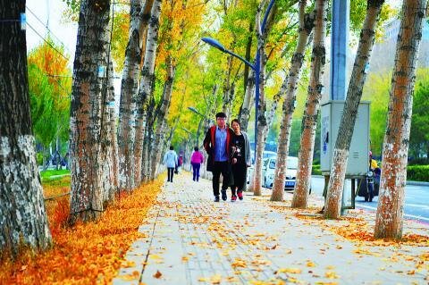 市民在多彩的景观路上穿行。
