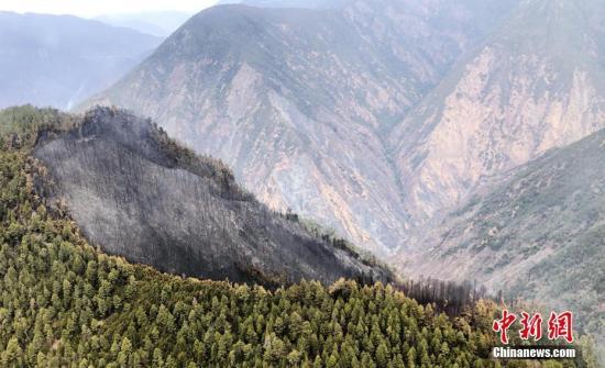 资料图:图为火灾的一处山顶。金汇通航 供图