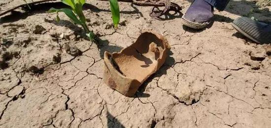 梨树一农民自家地总被挖 原来是地里有文物