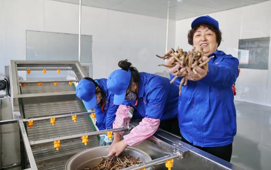 安图龙山福泉特依托地域优势开发特产经济