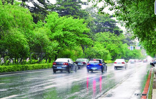 雨中的新民大街。 孙建一 摄
