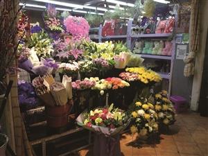 花卉市场内商家摊位上摆出鲜花和绿植。李子涵 摄