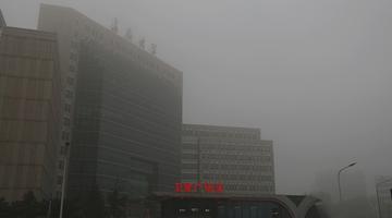 长春市迎大雾 能见度低