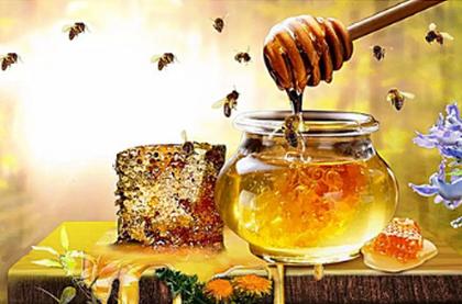蜂蜜的保质期有多久?长期保存蜂蜜要怎么做