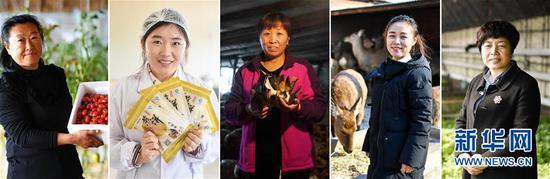 这是五位返乡创业女性的拼版照片,从左至右依次为张鹤敏在展示她所成立的有机蔬菜种植基地内产出的小西红柿(3月1日,新华社记者张楠摄);高扬扬在展示制作的煎饼(2月27日,新华社记者许畅摄);袁秀琴捧着刚刚采摘的食用菌(2月28日,新华社记者张楠摄);王娇在梅花鹿养殖厂内(2月27日,新华社记者许畅摄);李耀辉在她所经营的生态农庄采摘大棚内(2月27日,新华社记者许畅摄)。